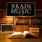 Brain Music (Songs for Studying, Reading, Concentrating & Mental Focus) by Official Library Study Collection