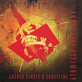 Gashed Senses And Crossfire by Front Line Assembly