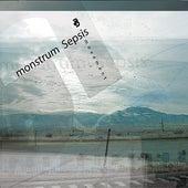 Movement by Monstrum Sepsis
