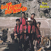 Tan Bonita by Los Tigres del Norte