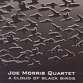 A Cloud Of Black Birds by Joe Morris