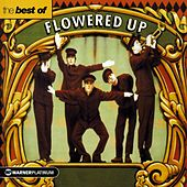 The Best Of by Flowered Up