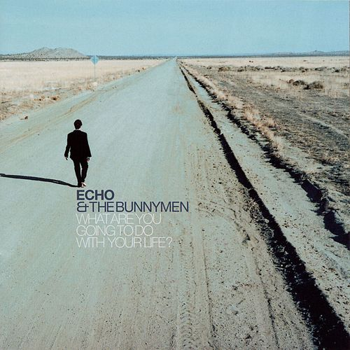What Are You Going To Do With Your Life? by Echo and the Bunnymen