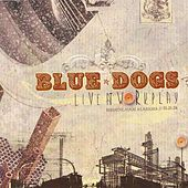 Live at Workplay by Blue Dogs