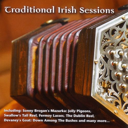 Traditional Irish Sessions by Various Artists