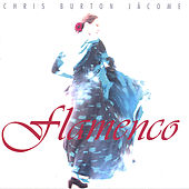 Flamenco by Chris Burton Jácome