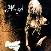 Don't Wanna Run by Angel