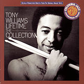 The Collection by Tony Williams