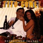 Recogiendo Frutos by Tito Gomez