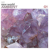 New World Ambient 01 by Various Artists