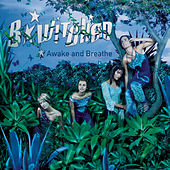 Awake And Breathe by B*Witched