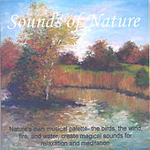 Sounds Of Nature by Perry Rotwein