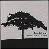 Under Cover of Darkness by Tom Salvatori
