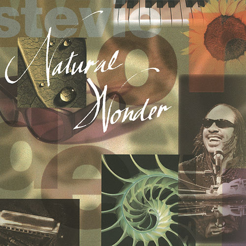 Natural Wonder by Stevie Wonder