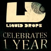 Liquid Drops 1 Year - EP von Various Artists