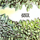 Awakening Soul by Various Artists