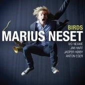 Birds by Marius Neset