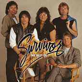 The Best Of Survivor by Survivor