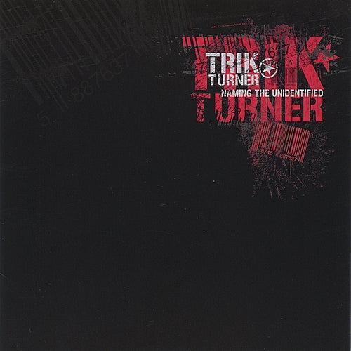 Naming The Unidentified by Trik Turner