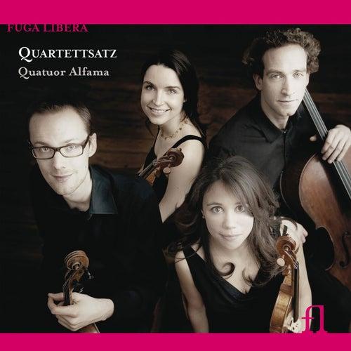 Quartettsatz by Quatuor Alfama