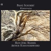 Schubert: Winterreise by Hans Jorg Mammel