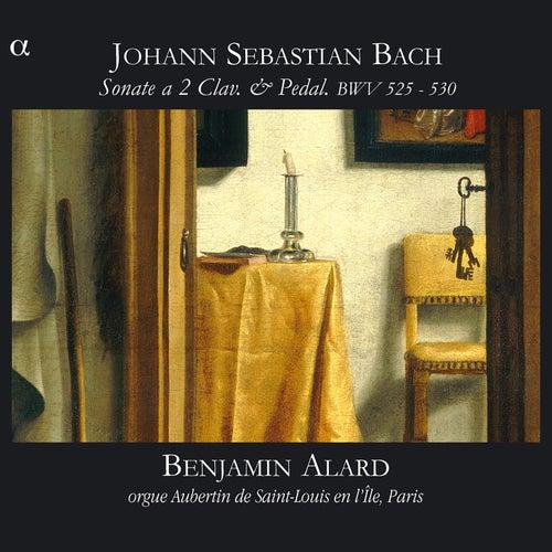 Bach: Sonate a 2 Clav. & Pedal, BWV 525 - 530 by Benjamin Alard