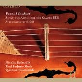 Schubert: Sonate fur Arpeggione und Klavier D. 821 & Streichquintett D. 956 by Various Artists