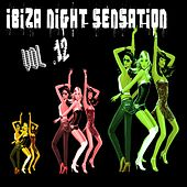 Ibiza Night Sensation, Vol. 12 by Various Artists
