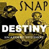 Destiny by Snap!