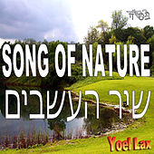 Song of Nature by Yoel Lax