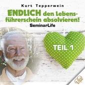 Endlich den Lebensführerschein absolvieren! Seminar Life - Teil 1 by Kurt Tepperwein