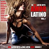 Amor Latino, Vol. 1 - 15 Big Latin Hits & Latin Love Songs (Bachata, Merengue, Salsa, Reggaeton, Kuduro, Mambo, Cumbia, Urbano, Ragga) by Various Artists