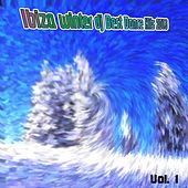 Ibiza Winter DJ Best Dance Hits 2013, Vol. 1 by Various Artists
