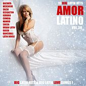 Amor Latino, Vol. 30 - 15 Big Latin Hits & Latin Love Songs (Bachata, Merengue, Salsa, Reggaeton, Kuduro, Mambo, Cumbia, Urbano, Ragga) by Various Artists