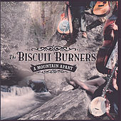 A Mountain Apart by The Biscuit Burners