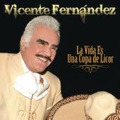 La Vida es una Copa de Licor by Vicente Fernández