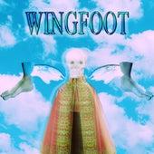 Wingfoot by Noah23