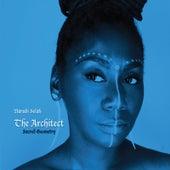 Architect: Sacred Geometry by Narubi Selah