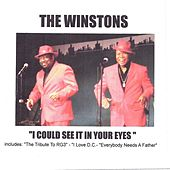 I Could See It in Your Eyes by The Winstons