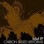 Irdial by Carbon Based Lifeforms
