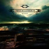 Beyond by Omnium Gatherum