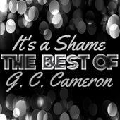 It's a Shame - The Best of G. C. Cameron by G.C. Cameron