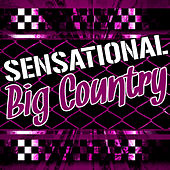 Sensational Big Country (Live) by Big Country