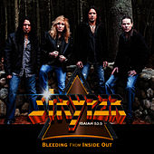 Bleeding from Inside Out by Stryper