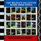Nature Sound Effects (The Wildlife Collection) by Sound Effects