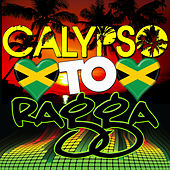 Calypso to Ragga von Various Artists