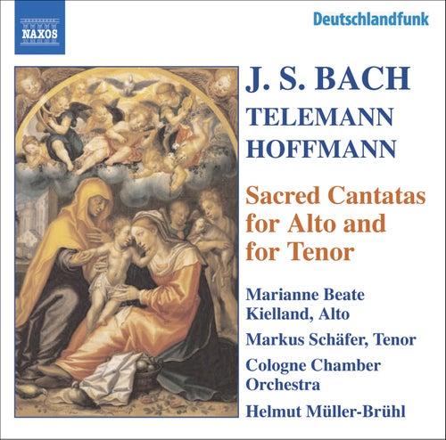 BACH, J.S. / HOFFMANN / TELEMANN: Alto and Tenor Cantatas, BWV 35, 55, 160, 189 by Various Artists