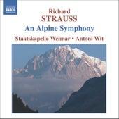 STRAUSS, R.: Eine Alpensinfonie (An Alpine Symphony) by Weimar Staatskapelle