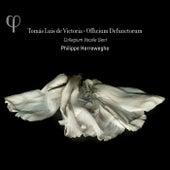 Victoria: Officium Defunctorum by Collegium Vocale Gent