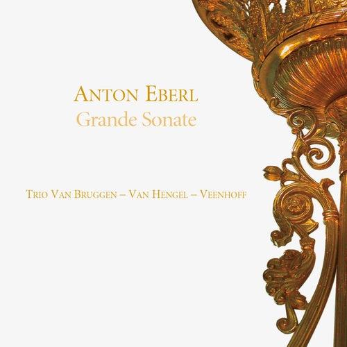 Grande sonate by Trio Van Hengel